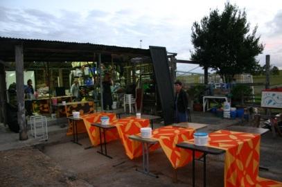 Woodford Folk Festival decor