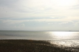 Redcliffe bay