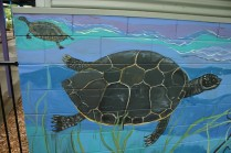 two turtles mural
