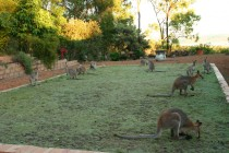 Rusty Roo Artists retreat
