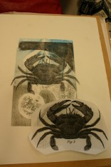 crab engraving transfer print