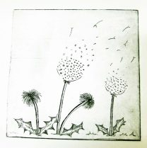 Glennie dandelion cu
