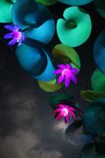 Kez Howell Blue Lotus lights Woodfordia